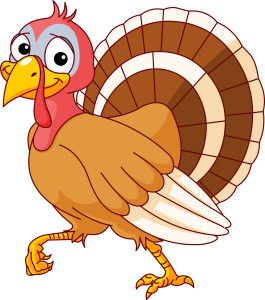 Studio Closed - Thanksgiving Break